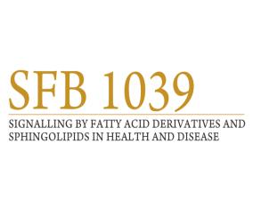 sfb1039